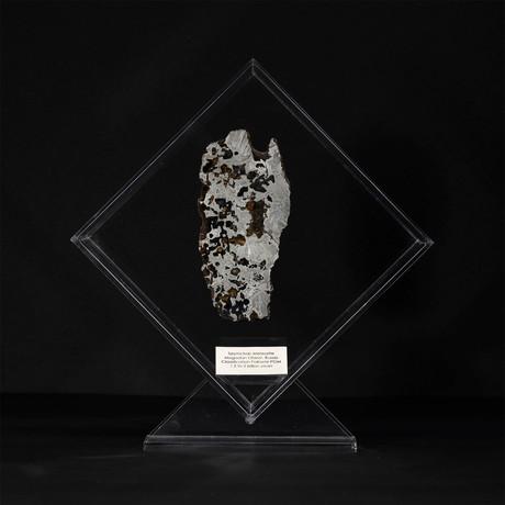 Seymchan Olivine Meteorite // Magadanskaya Oblast // Transparent Acrylic Display // Ver. 3
