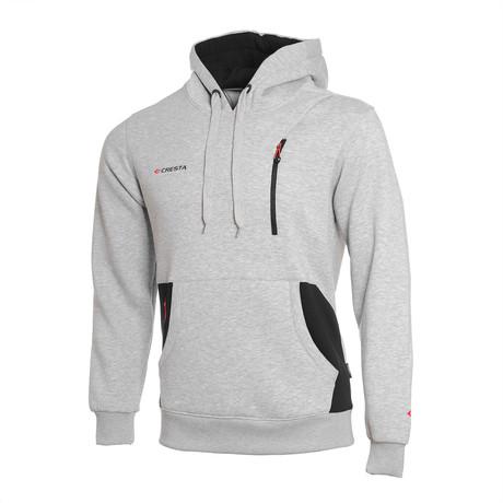 Hoodie V2 // Gray (S)