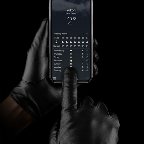 Leather Touchscreen Gloves // Black (Small)