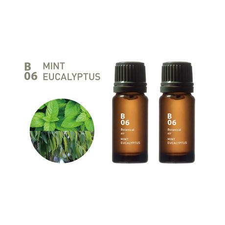 Essential Oil // Set of 2 // B06 Mint Eucalyptus