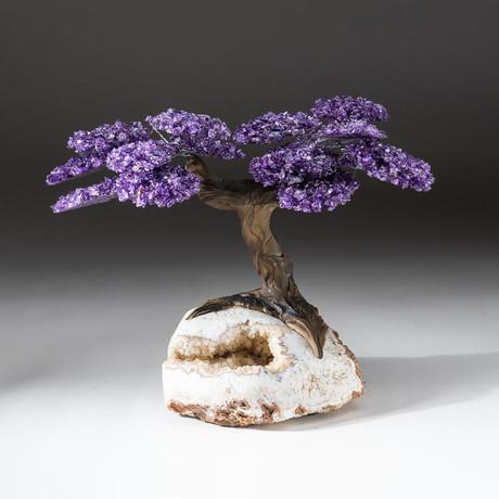 The Empowerment Tree // Custom Amethyst Tree + Citrine Matrix // V1