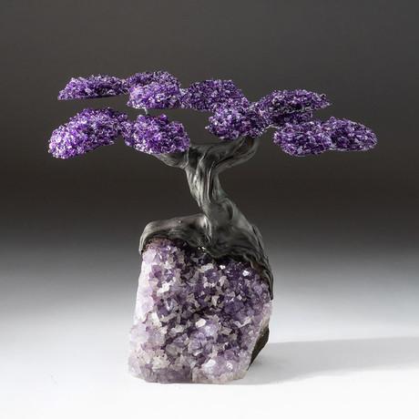 The Protection Tree // Custom Amethyst Tree + Amethyst Matrix // V4