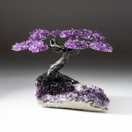 The Protection Tree // Custom Amethyst Tree + Amethyst Matrix // V5
