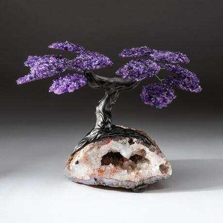 The Relaxation Tree // Custom Amethyst Tree + Clear Quartz Matrix