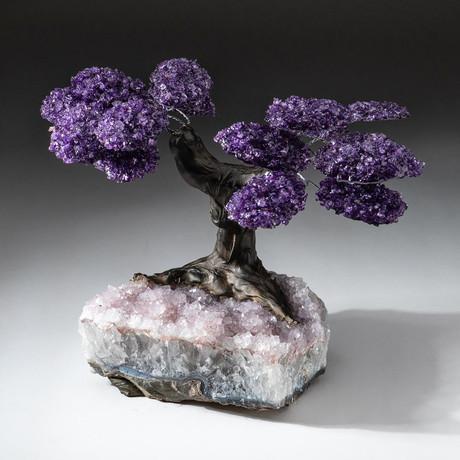 The Protection Tree // Custom Amethyst Tree + Amethyst Matrix // V18