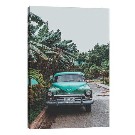 "Viñales, Cuba // Luke Anthony Gram (26""W x 40""H x 1.5""D)"