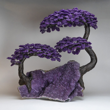 The Protection Tree // Genuine Amethyst Clustered Gemstone Tree on Amethyst Matrix // Massive