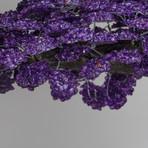 The Protection Tree // Genuine Amethyst Clustered Gemstone Tree on Amethyst Matrix // Massive