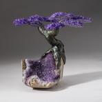 The Protection Tree // Custom Amethyst Clustered Gemstone Tree on Amethyst Matrix // V9