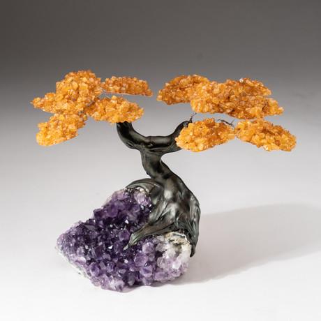 The Money Tree // Custom Citrine Clustered Gemstone Tree on Amethyst Matrix // V4