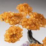 The Money Tree // Custom Citrine Clustered Gemstone Tree on Amethyst Matrix // V12