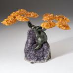The Money Tree // Custom Citrine Clustered Gemstone Tree on Amethyst Matrix // V7