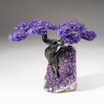 The Protection Tree // Custom Amethyst Clustered Gemstone Tree on Amethyst Matrix // V13