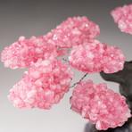 The Love Tree // Custom Rose Quartz Clustered Gemstone Tree on Amethyst Matrix // V9