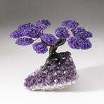 The Protection Tree // Custom Amethyst Clustered Gemstone Tree on Amethyst Matrix // V15