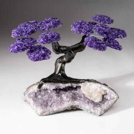 The Protection Tree // Custom Amethyst Clustered Gemstone Tree on Amethyst Matrix // V16