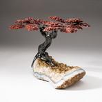The Safety Tree // Custom Red Jasper Clustered Gemstone Tree on Citrine Matrix // V1