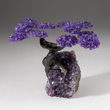 The Protection Tree // Custom Amethyst Clustered Gemstone Tree on Amethyst Matrix // V19
