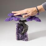 The Protection Tree // Custom Amethyst Clustered Gemstone Tree on Amethyst Matrix // V20