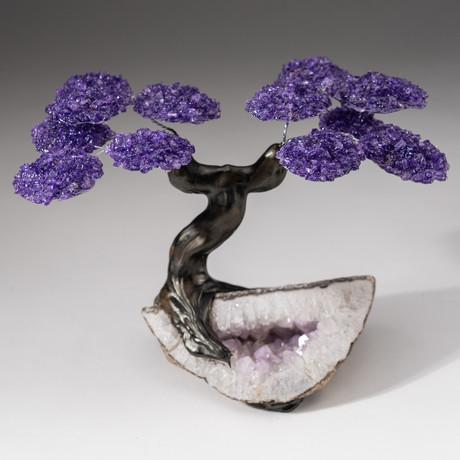 The Protection Tree // Custom Amethyst Clustered Gemstone Tree on Amethyst Matrix // V22