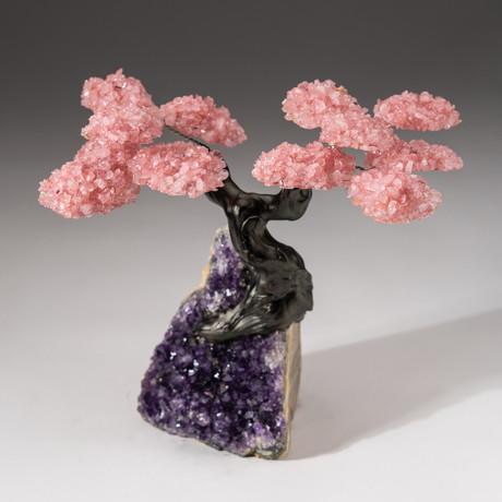 The Love Tree // Custom Rose Quartz Clustered Gemstone Tree on Amethyst Matrix // V14