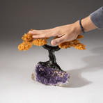 The Money Tree // Custom Citrine Clustered Gemstone Tree on Amethyst Matrix with Calcite