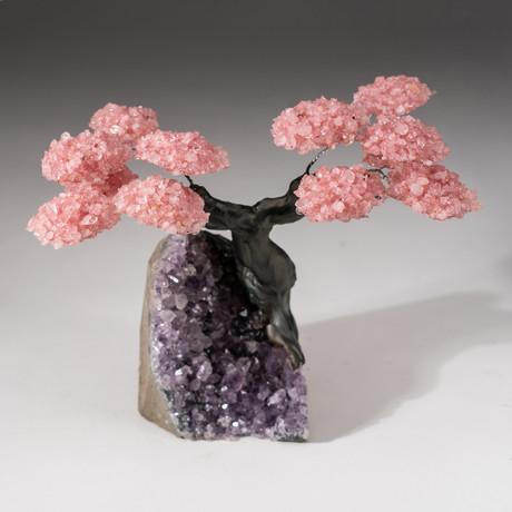 The Love Tree // Custom Rose Quartz Clustered Gemstone Tree on Amethyst Matrix // V17