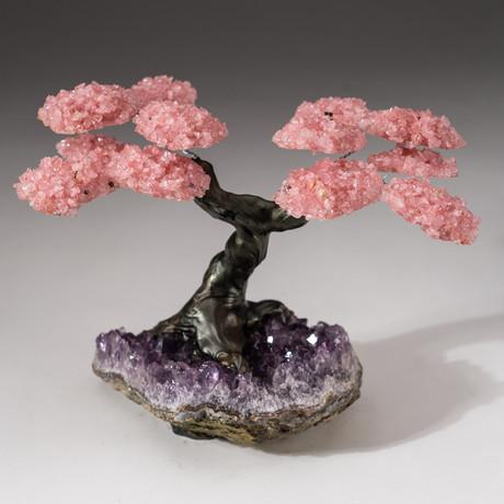 The Love Tree // Custom Rose Quartz Clustered Gemstone Tree on Amethyst Matrix // V18