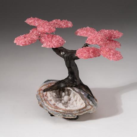 The Wellness Tree // Custom Rose Quartz Clustered Gemstone Tree on Quartz Crystal Matrix