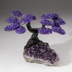 The Protection Tree // Custom Amethyst Clustered Gemstone Tree on Amethyst Matrix // V24