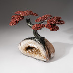 The Safety Tree // Custom Red Jasper Clustered Gemstone Tree on Citrine Matrix // V2