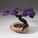 The Empowerment Tree // Custom Amethyst Clustered Gemstone Tree on Citrine Matrix // V4