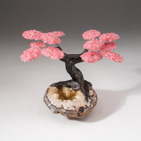 The Comfort Tree // Custom Rose Quartz Clustered Gemstone Tree on Citrine Matrix // V4