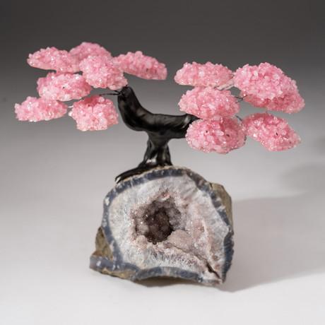 The Wellness Tree // Custom Rose Quartz Clustered Gemstone Tree on Quartz Crystal Matrix with Calcite // V2