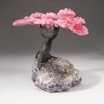 The Love Tree // Custom Rose Quartz Clustered Gemstone Tree on Amethyst and Smoky Quartz Matrix