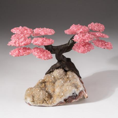 The Wellness Tree // Custom Rose Quartz Clustered Gemstone Tree on Quartz Crystal Matrix with Calcite // V1