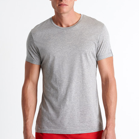 James Round Neck T-Shirt // HeatherGray (Small)