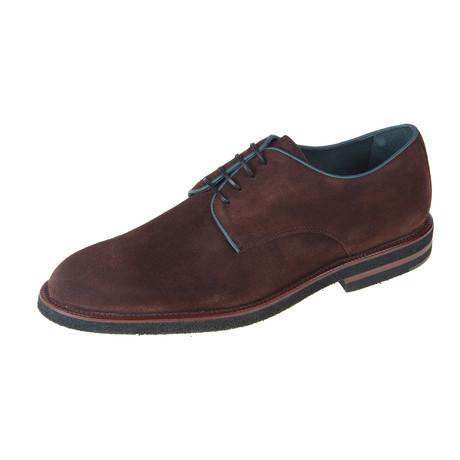 Derby Oil Shoe // Brown (Euro: 40)