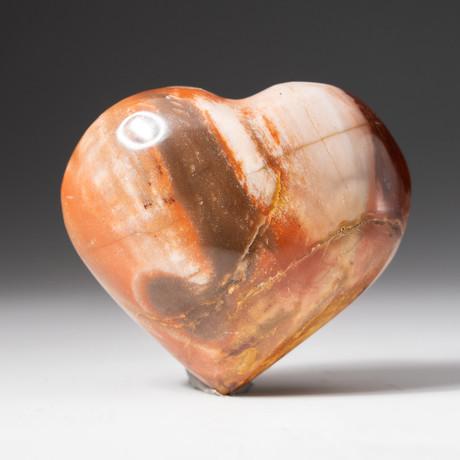 Genuine Polished Petrified Wood Heart + Acrylic Display Stand