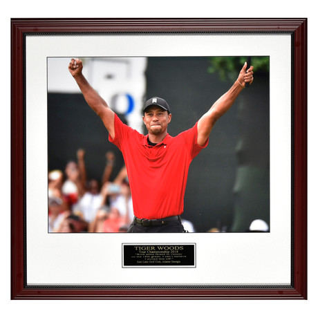 Tiger Woods // 2018 Tour Champion // Collectible Display