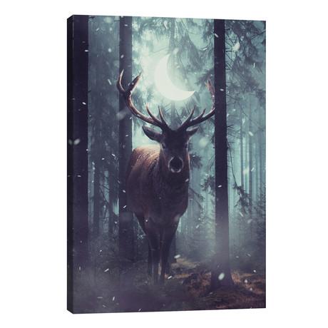 Forest Dweller // Annisa Tiara Utami