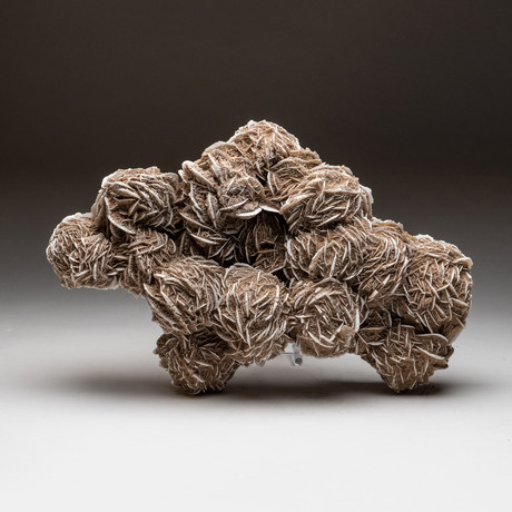 Genuine Desert Rose Selenite Cluster V2