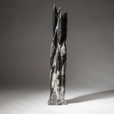 Genuine Polished Orthoceras Fossil Statue