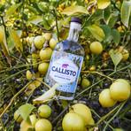 Botanical Rum // Set of 2 // 750 ml Each