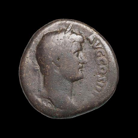 Huge Roman Bronze Coin of Hadrian // 117-138 AD