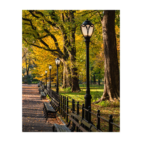 """Central Park Mall (8""""W x 10""""H)"""
