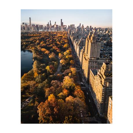 "Fall Central Park (8""W x 10""H)"