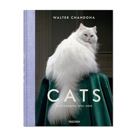Walter Chandoha // The Cat Book