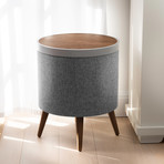 Zain Speaker End Table (Walnut)