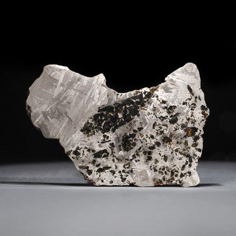 Genuine Seymchan Pallasite Meteorite Slab + Acrylic Display Stand